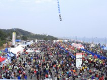 第8回湘南国際マラソンを応援